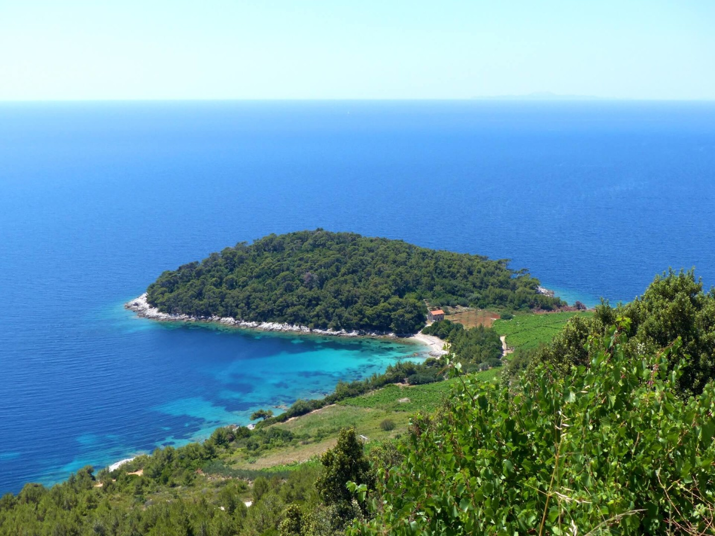 peljesac peninsula sailing daily cruises wine tasting one day cruises